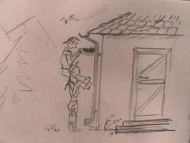 Sketch_thenest